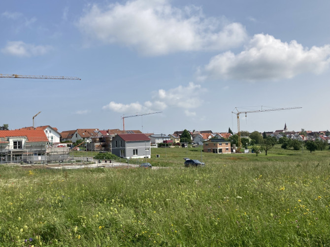 Neubaugebiet Amsel